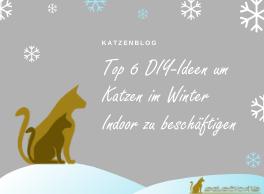 6 DIY-Ideen für Winterbeschäftigung